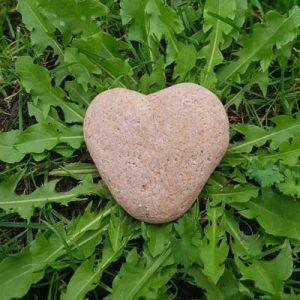 Hartcoherentie therapie - foto hart van steen in plantje